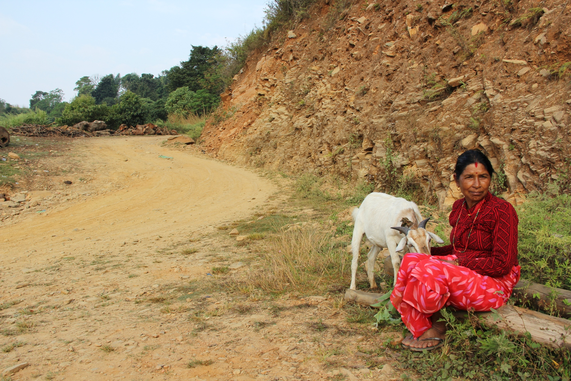 "Devi Pokharel of Phalam Khani waits by the side of the road with her goat, for a crowded bus to take them the dusty 150km to Kathmandu. Normally her whole family returns to her village for the festival. ""Now my house is gone, and I have to get to the city because no-one will come here,"" she added. ""It is far, and very tiring for me. The fuel problem means it is expensive to travel now and there is very little room on the bus. Without cooking gas in the city I have to pay someone else 2000 rupees (US$20) to butcher and prepare the goat for the feast. If others would have come here, we could have done everything ourselves."""